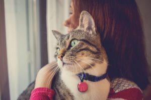 mini lokalizator dla kota notiOne