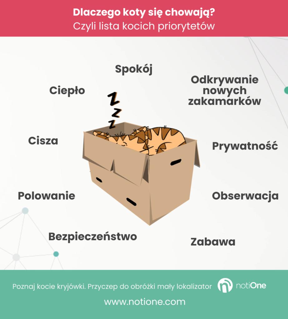 Dlaczego koty się chowają? - infografika